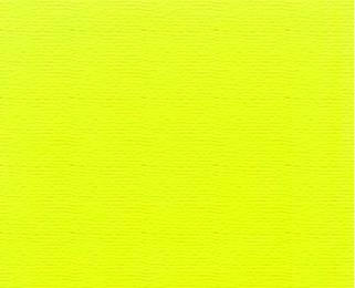 5854_32745_Neon%20Yellow%20Principale.jpg